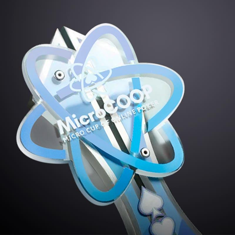 Результаты третьего этапа MicroCOOP